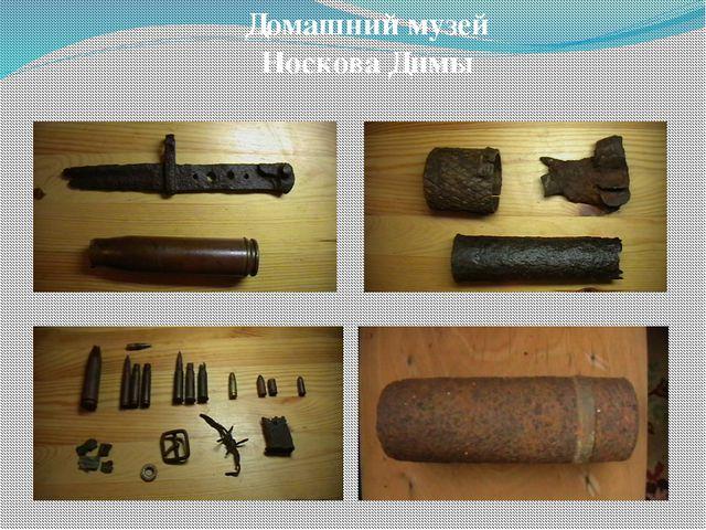 Домашний музей Носкова Димы