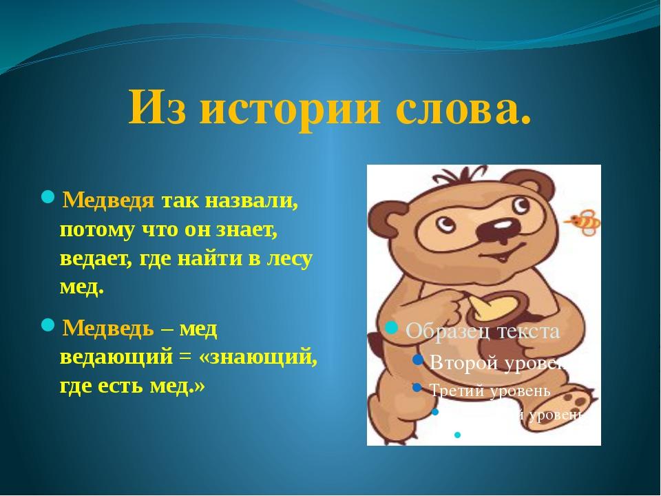 Из истории слова. Медведя так назвали, потому что он знает, ведает, где найти...
