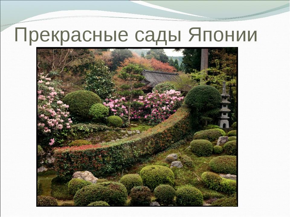 Прекрасные сады Японии