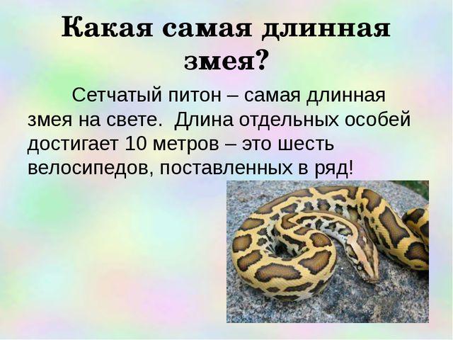 Какая самая длинная змея? Сетчатый питон – самая длинная змея на свете. Длина...