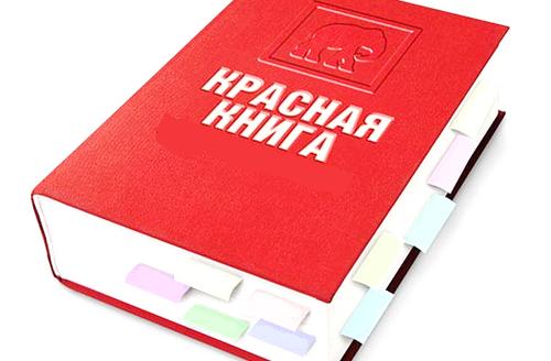 C:\Users\Резеда\Desktop\презентация красная книга\красная книга.png