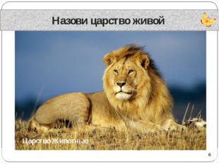 Назови царство живой Царство Животные