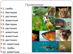 Проверяем: 1. грибы 2. бактерии 3. растения 4. животные 5. бактерии 6. растен