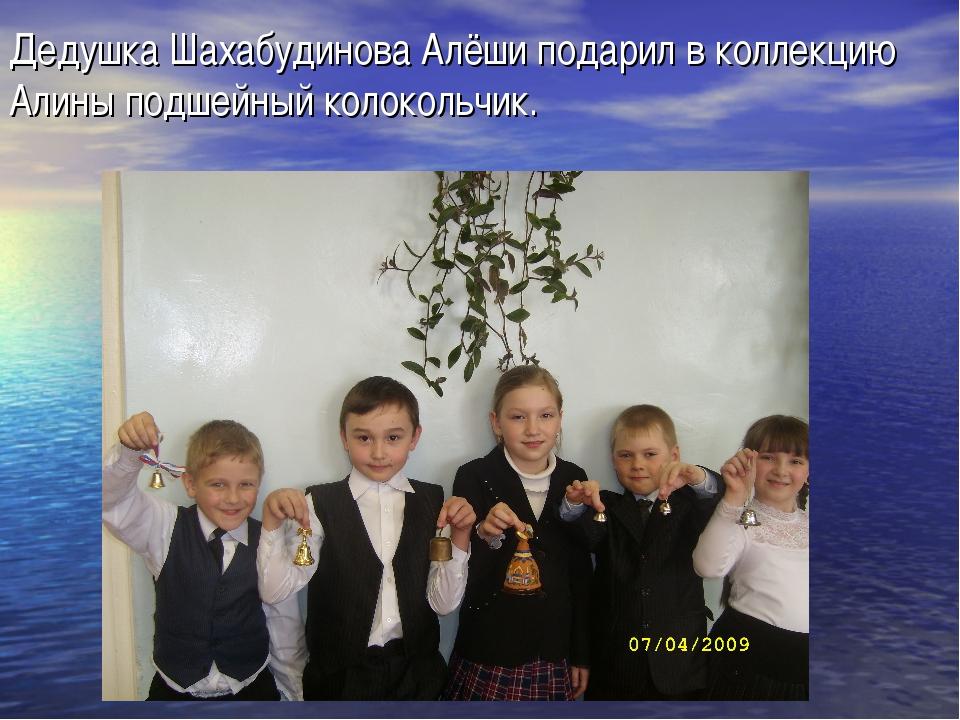 Дедушка Шахабудинова Алёши подарил в коллекцию Алины подшейный колокольчик.