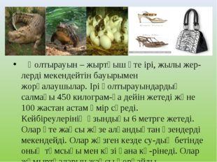 Қолтырауын – жыртқыш өте ірі, жылы жер-лерді мекендейтін бауырымен жорғалауш