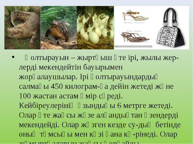 Қолтырауын – жыртқыш өте ірі, жылы жер-лерді мекендейтін бауырымен жорғалауш...