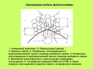 I.Антенный комплекс. II.Реакционный центр. 1.Кванты света. 2.Пигменты, п