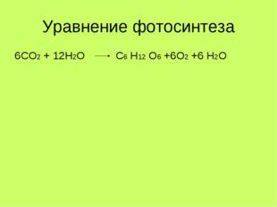 Уравнение фотосинтеза 6СО2 + 12Н2О  С6 Н12 О6 +6О2 +6 Н2О