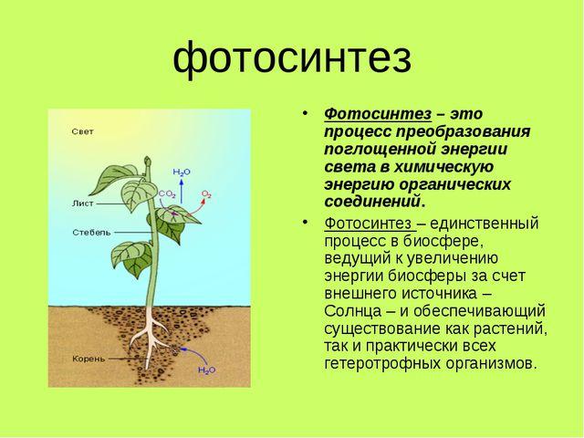 фотосинтез Фотосинтез – это процесс преобразования поглощенной энергии света...