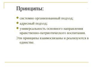 Принципы: системно организованный подход; адресный подход; универсальность ос