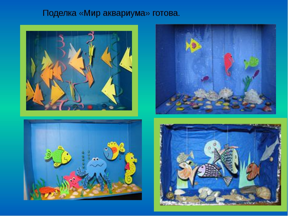Поделка «Мир аквариума» готова.