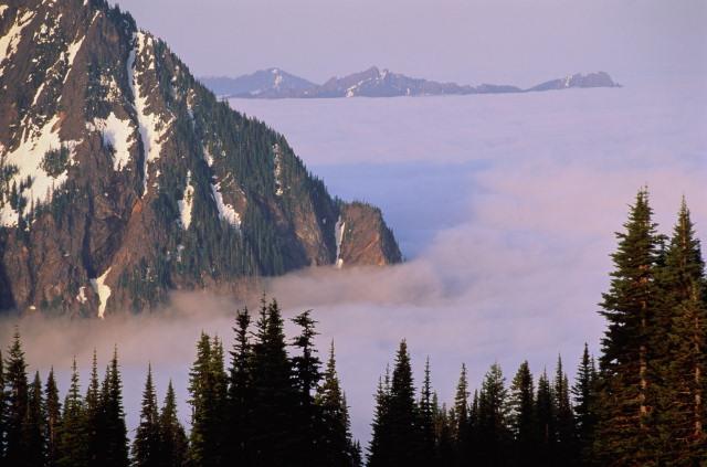 D:\Landscape\Forest\969508-002.jpg