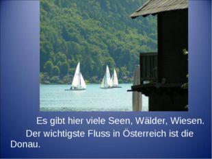 Es gibt hier viele Seen, Wälder, Wiesen. Der wichtigste Fluss in Österreich
