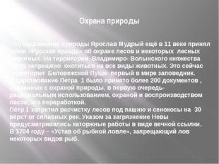 Охрана природы По сохранению природы Ярослав Мудрый ещё в 11 веке принял зако
