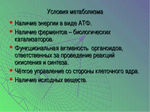 Условия метаболизма Наличие энергии в виде АТФ. Наличие ферментов – биологиче