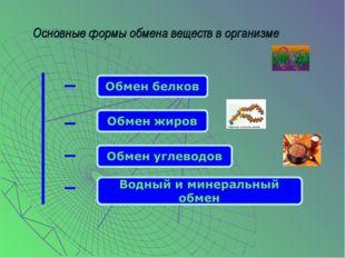 Основные формы обмена веществ в организме
