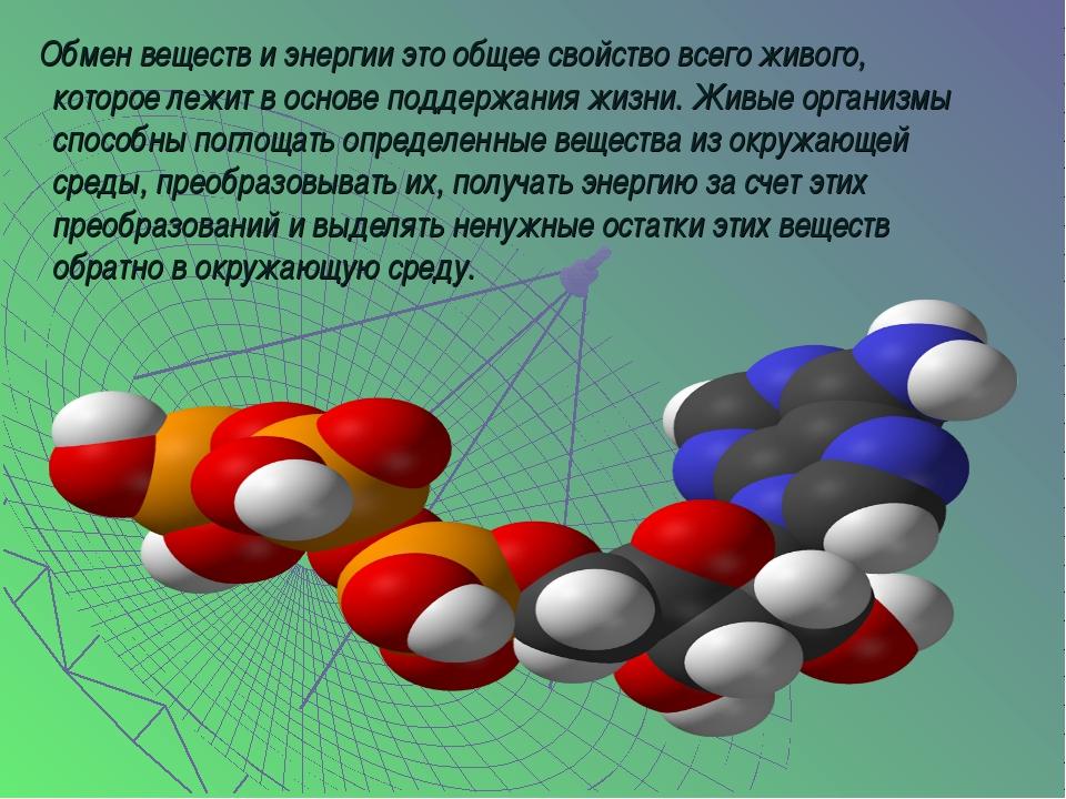 Обмен веществ и энергии это общее свойство всего живого, которое лежит в осн...