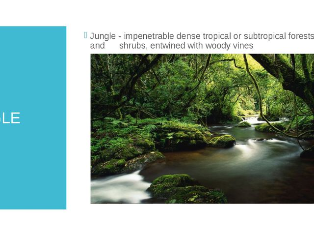 JUNGLE Jungle - impenetrable dense tropical or subtropical forests and shrubs...