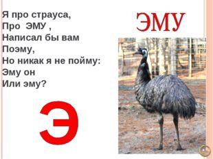 Я про страуса, Про ЭМУ , Написал бы вам Поэму, Но никак я не пойму: Эму он Ил