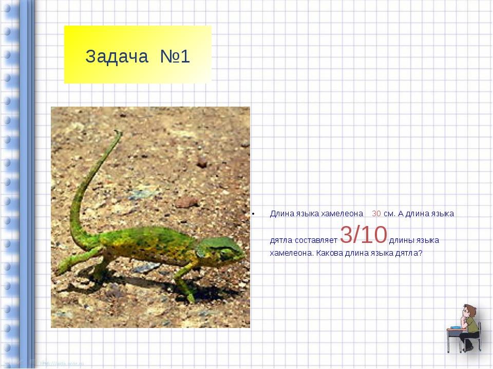 Задача №1 Длина языка хамелеона 30 см. А длина языка дятла составляет 3/10 дл...