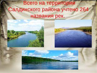 Всего на территории Салдинского района учтено 264 названия рек.