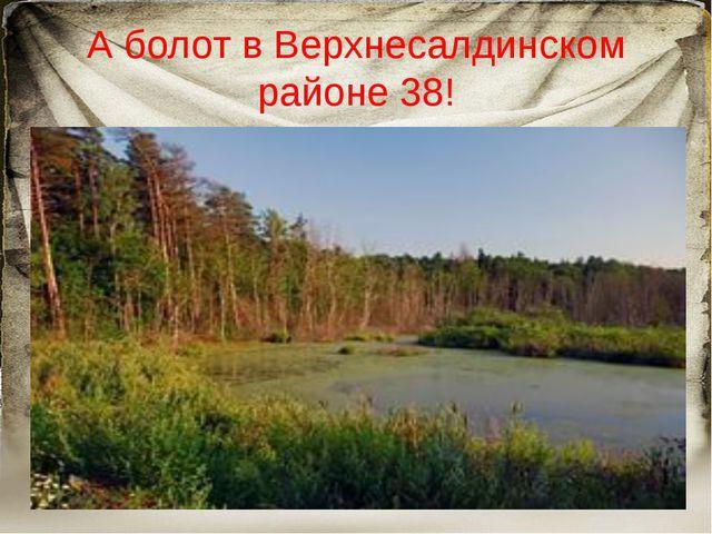 А болот в Верхнесалдинском районе 38!