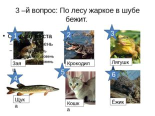 3 –й вопрос: По лесу жаркое в шубе бежит. 6 5 4 3 2 1 Заяц Крокодил Лягушка Щ