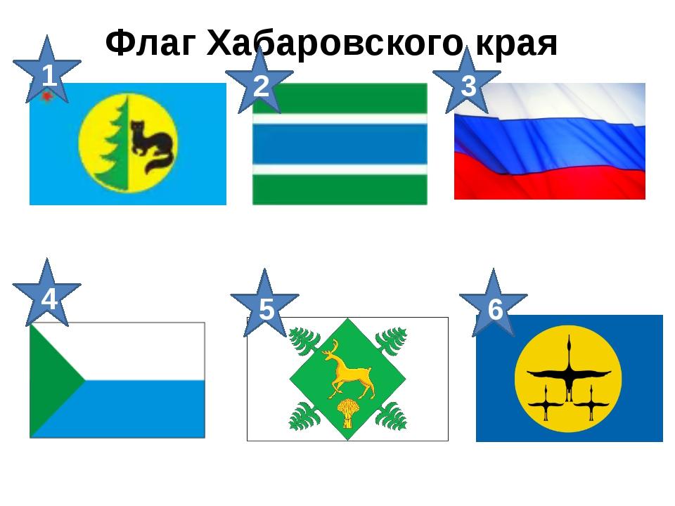Флаг Хабаровского края 1 2 4 3 5 6