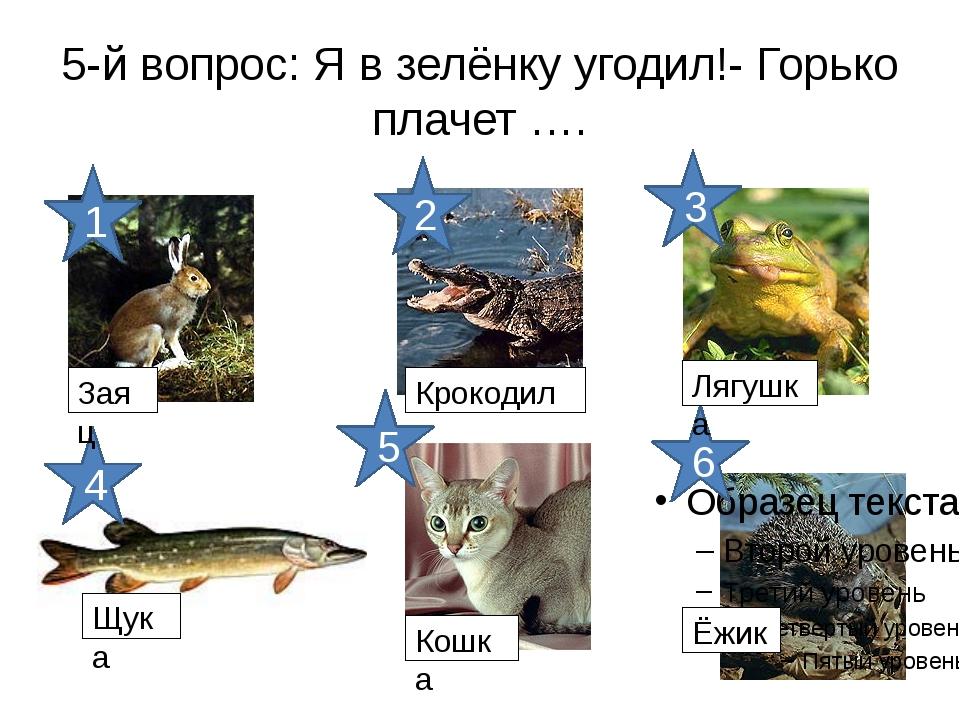 5-й вопрос: Я в зелёнку угодил!- Горько плачет …. 6 5 4 3 2 1 Заяц Крокодил Л...