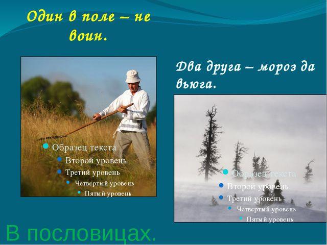 В пословицах. Один в поле – не воин. Два друга – мороз да вьюга.