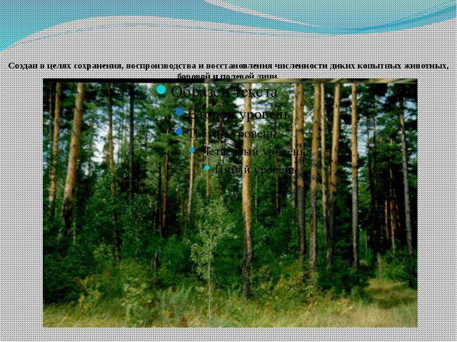 Создан в целях сохранения, воспроизводства и восстановления численности дики...