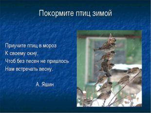 Покормите птиц зимой Приучите птиц в мороз К своему окну, Чтоб без песен не п