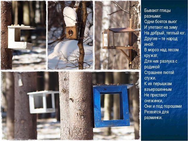 Бывают птицы разными: Одни боятся вьюг И улетают на зиму На добрый, теплый юг...