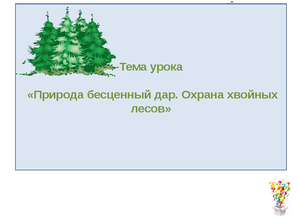 What our lesson will be about Тема урока «Природа бесценный дар. Охрана хвойн...