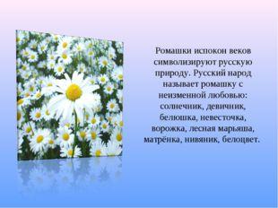 Ромашки испокон веков символизируют русскую природу. Русский народ называет р