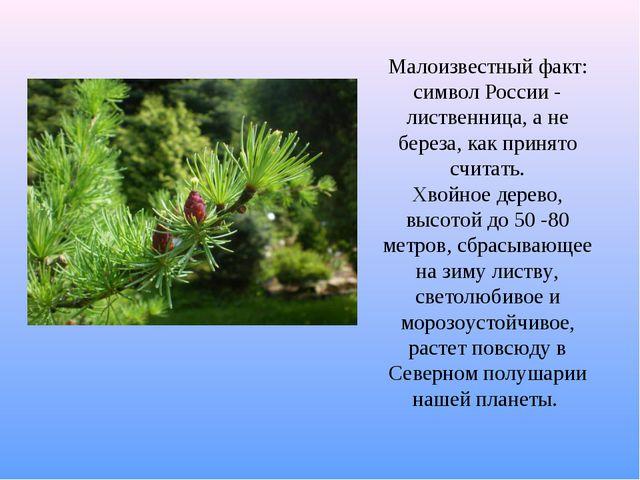 Малоизвестный факт: символ России - лиственница, а не береза, как принято счи...