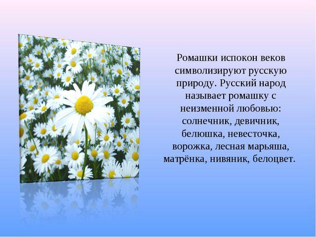 Ромашки испокон веков символизируют русскую природу. Русский народ называет р...