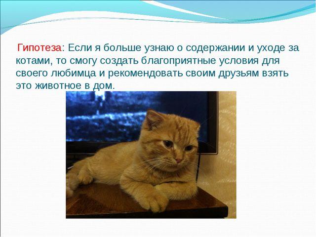 Гипотеза: Если я больше узнаю о содержании и уходе за котами, то смогу созда...