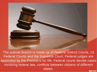 The judicial branch is made up of Federal District Courts, 13 Federal Courts