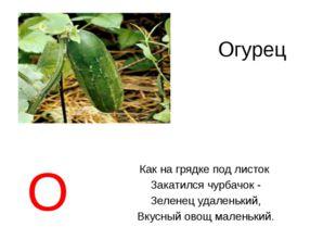 Огурец Как на грядке под листок Закатился чурбачок - Зеленец удаленький, Вкус