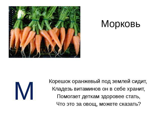 Морковь Корешок оранжевый под землей сидит, Кладезь витаминов он в себе храни...