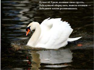 Думая об Урале, изливая свою грусть, Лебедушкой обернулась, вывела птенцов —