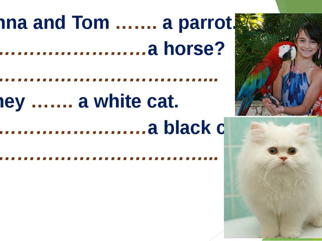 3. Anna and Tom ……. a parrot. …………………………a horse? …………………………………... 4. They ……...