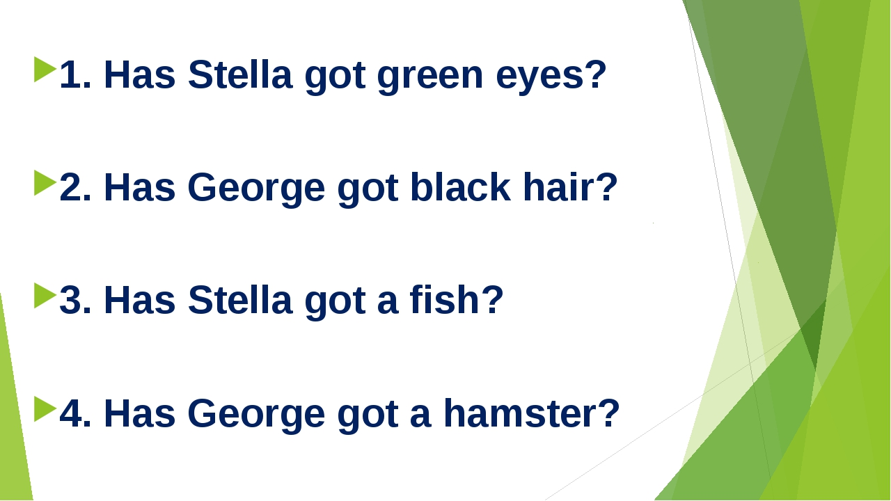 1. Has Stella got green eyes? 2. Has George got black hair? 3. Has Stella go...