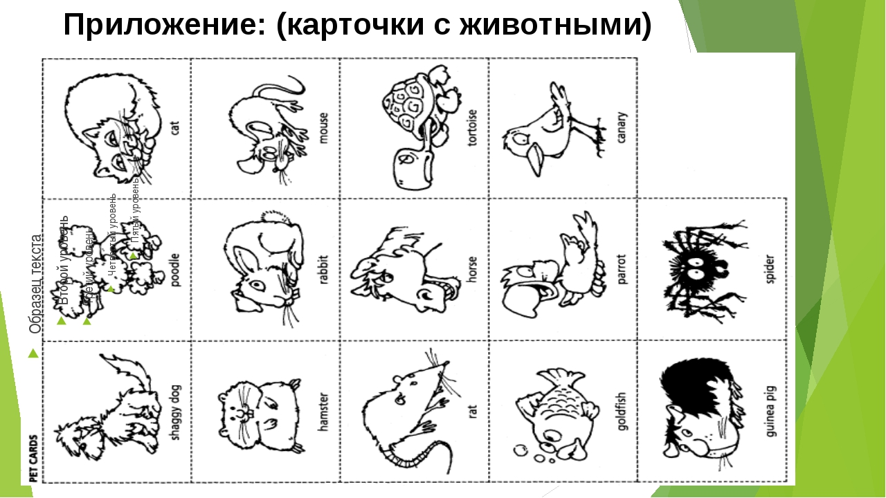 Приложение: (карточки с животными)