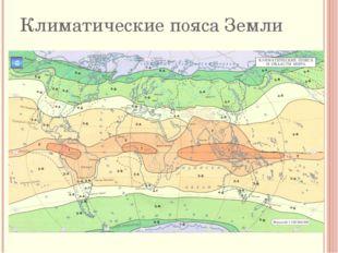 проверим экваториальный субарктический арктический субтропический субэкватори