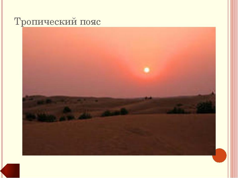 Переходные климатические пояса Экваториальный КП Тропический КП Умеренный КП...