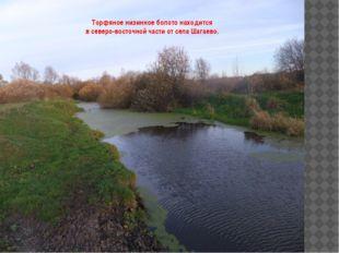 Торфяное низинное болото находится в северо-восточной части от села Шагаево.