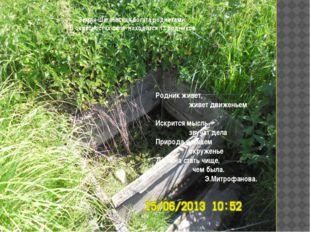 Земля Шагаевская богата родниками. В окресностях села находится 13 родников.
