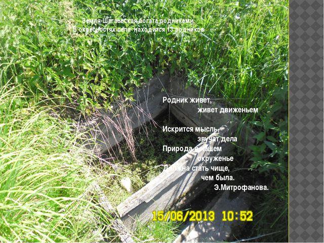Земля Шагаевская богата родниками. В окресностях села находится 13 родников....